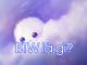Btw là gì? Ý nghĩa của Btw trong Tiếng Anh là gì